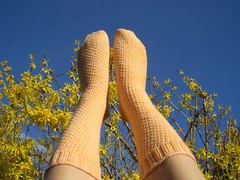 Sunshine shimmer socks