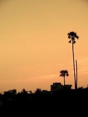 Sunset as seen by naked eye (MrsFife) Tags: sunset india vizag visakhapatnam