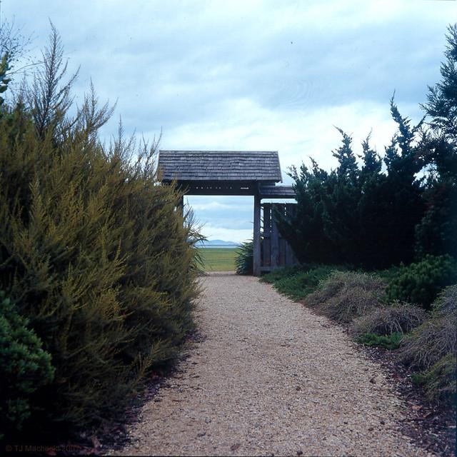Gate, Japanese Garden