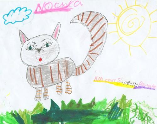 Le chat de Noura