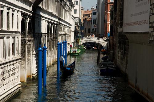 Venice 100