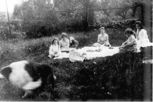 the children's picnic 2