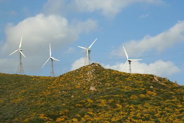 wind farm, southern spain