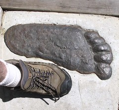 Bigfoot shoe