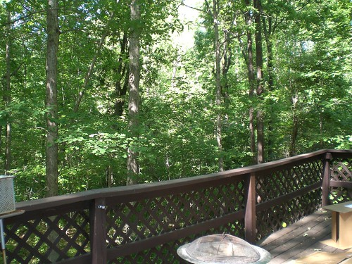 back deck. where's my neighbor?