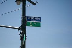 Monchito & Su Amigo (Enjoy Patrick Responsibly) Tags: nyc brooklyn 50mm nikon mexican gothamist nikkor sunsetpark cincodemayo 50mmf18af d80