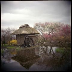 長野の自然・風景