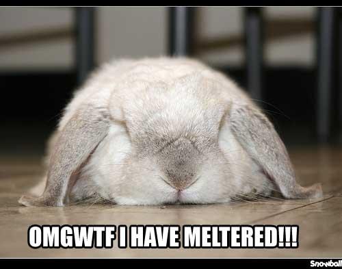 meltered