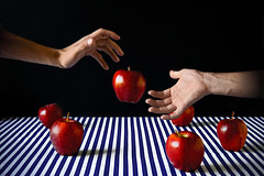 Gluttony - Gola (andrea francesco) Tags: red me apple hands stripes mani gluttony righe mela gola sevendeadlysins theseven