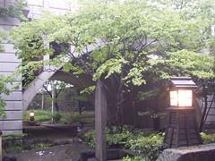 音無川親水公園-05.音無川の聖橋