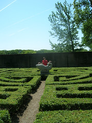 Lost in the Chinese Parterre