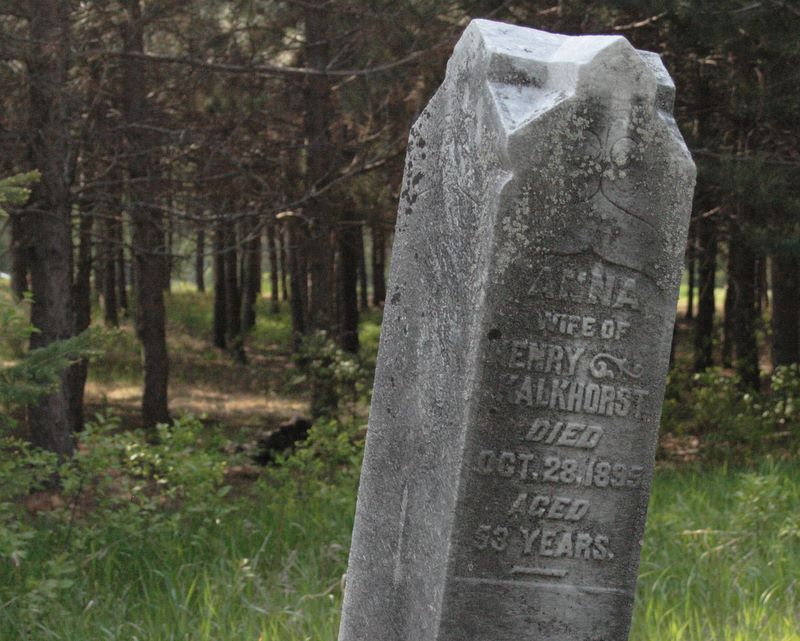 gravestone in the forest