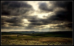Dark Day (andrewlee1967) Tags: uk england clouds dark landscape bravo sheep yorkshire stormy fields moors sunrays andrewlee canon400d andrewlee1967 focusman5