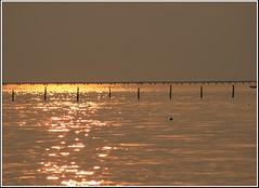 Chesapeake Bay Bridge Sunset (__Dame__) Tags: family sunset oneofakind fave virginiabeach virgina questfortherest memorialweekend naturesfinest chicksbeach blueribbonwinner a abigfave agradephoto goldenphotographer ithinkthisisartaward goldenphotographeraward thenaturegroup