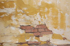 Cracked wall (rticotropical) Tags: old trip travel brazil vacation brick art broken up wall wasted concrete ancient hole time farm side country cement surface plaster structure dirty wear crack stained erosion falling tired maintenance messy beat cavity block aged paulo tear terra fracture chunk cotta so flaky crooked decayed loose slab arquitecture consumption unwashed grungy breaking cling crumbling weak cruddy fissure wornout apart crummy smudged untidy dated breach devide weathering depletion infirm chink caked defiled overuse argil sullied disarrayed