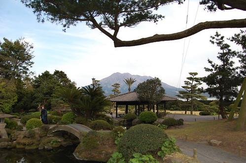Satsuma garden vew