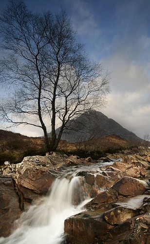 IMG_8436 -- landscape scotland tree mountain etive stream scenery glen mor