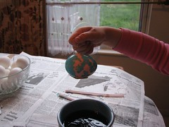 Isabelle's pink blue egg