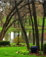 Spring Rain (linda yvonne) Tags: reflections bravo soe orton inthegarden agreenworld supershot interestingness28 springscene i500 shieldofexcellence lindayvonne anawesomeshot anawsomeshot favoritegarden superhearts