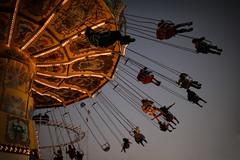 Wellenflieger (Lil [Kristen Elsby]) Tags: carnival festival easter fun lights fly twilight topf50 ride dusk sydney australia swing editorial amusementpark rollercoaster topv3333 olympicpark homebush reportage australasia royaleastershow oceania eastershow taipan sydneyroyaleastershow waveswinger swingride wellenflieger funride wellenflug waveswing waveswingers sydneyroyaleastershow2007