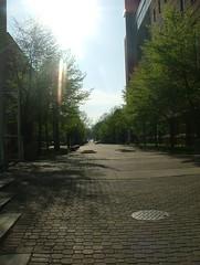 Campus Sun I (WickerBasket) Tags: college campus illinois spring april urbana champaign uofi 422 chambana
