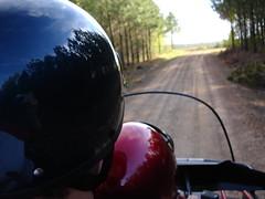 4-wheelin'