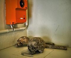 y los muertos eran tan viejos que todo el mundo se reía de ellos... (Norto) Tags: dead death skull muerte bones muertos huesos catacumbas parís calavera norto nortofoto nortofotocom nortoinfo