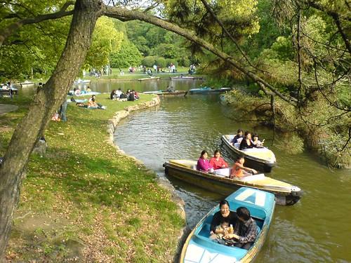 在中山公园划船