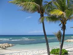 jamaica 207