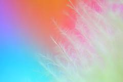Feather Blue/Purple/Orange (ukaaa) Tags: macro feather gradient sonia