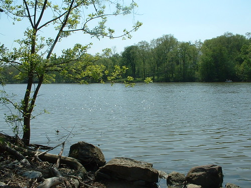 Griggs Reservior