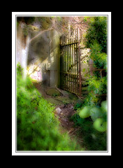 Through The Gate Into The Light (Glenbourne At Home) Tags: light colour eye gate searchthebest northernireland softfocus glyn aclass coantrim supershot flickrsbest mywinner abigfave anawesomeshot ultimateshot superbmasterpiece goldenphotographer wowiekazowie superhearts citrit blackribbonbeauty yourpath softblending stjohnsglyn lyricbyhim