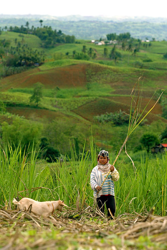 boy, farm, Philippines, rural goat kambing Negros Oriental Pinoy Filipino Pilipino Buhay  people pictures photos life Philippinen  菲律宾  菲律賓  필리핀(공화국) Philippines