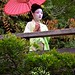San Francisco - Golden Gate Park Japanese Tea Garden