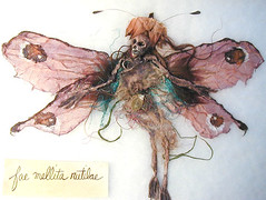 faerie specimen 6 (Kimhotep) Tags: art faerie fairy scientific specimen taxidermy