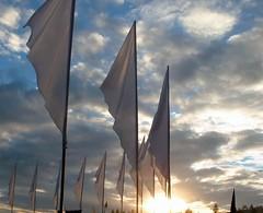 Banners - by meganpru
