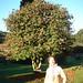 Veronica vor einem Baum am 'Castelinho do Caracol'