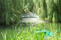 Monet's Bridge... (moonfish) Tags: grounds for sculpture bridge mystical