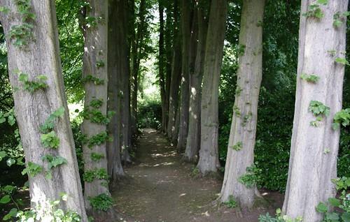 Gibberd Gardens