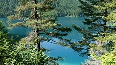 Weissensee (Rader) Tags: leica vacation lake alps nature water photography austria see top20np tv wasser urlaub natur krnten carinthia clean clear alpine top20nature sauber alpen rein 169 hdtv weissensee digilux badesee drautal