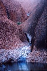 Rheadr ar Uluru por traed mawr