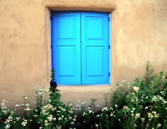 Ranchos Window (Mary Hockenbery (reddirtrose)) Tags: blue newmexico southwest flower home window topf25 topv2222 topv555 topv333 topf75 closed topv1111 border topv999 adobe shutters 50100fav topv777 sets zip87557 ybp popolo10 dontgiveapopolo2 votedpopolobythepopoloposse