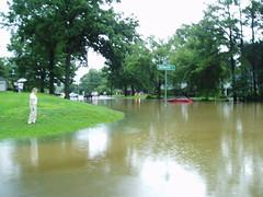 Flooding in Memphis (tbertor1) Tags: tulio bertorini tuliobertorini