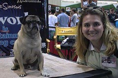 Frank the Pug and Jodi