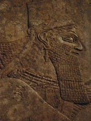 Assyrian Reliefs from the palace of Ashurnasirpal II in Nimrud Iraq 6 (mharrsch) Tags: sculpture iraq palace relief assyria assyrian ashurnasirpal nimrud mharrsch