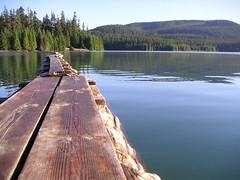 Timothy Lake log bridge