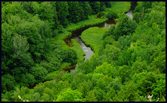 Big Carp River, Michigan's Porkies (joeldinda) Tags: trees mountains green water wow river catchycolors michigan favorites f10 michiganfavorites lilies michiganparks porcupine 110fav porcupinemountains ontonagon joeldinda porkies