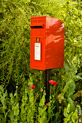 Red British Rural Postbox (BigRedTroll) Tags: uk box bright british business closeup color communicate communication container country countryside crown foliage industry letter letterbox mail mailbox nationality post postbox red retro royal tradition traditional