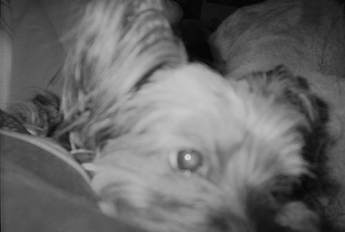 my baby 4.