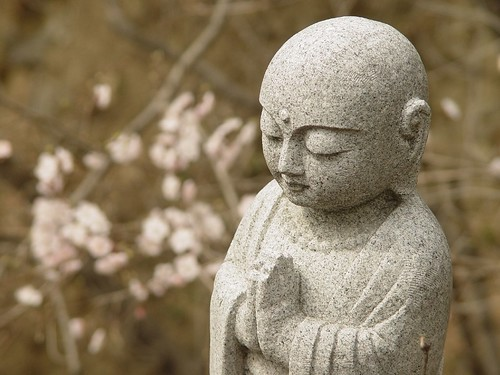 Buddha and Spring Blossoms
